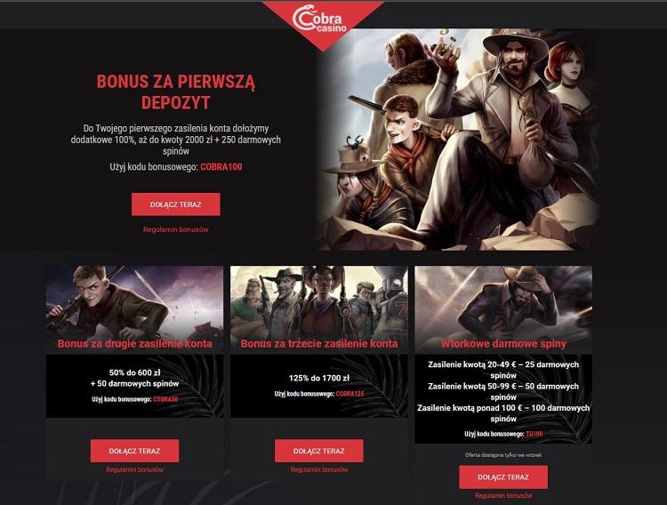 Cobra casino pic 1