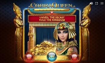 Cobra Queen – kolejna news item 1
